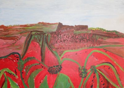 Red Flowers on Hill